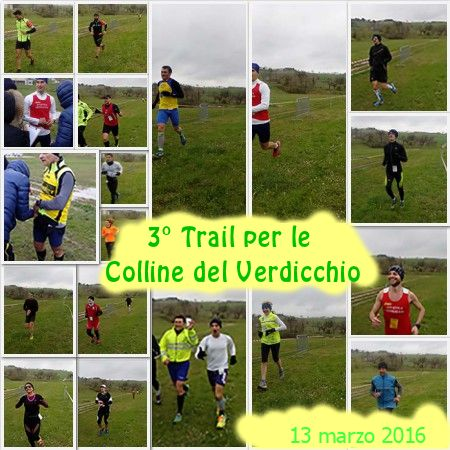 trail_collage
